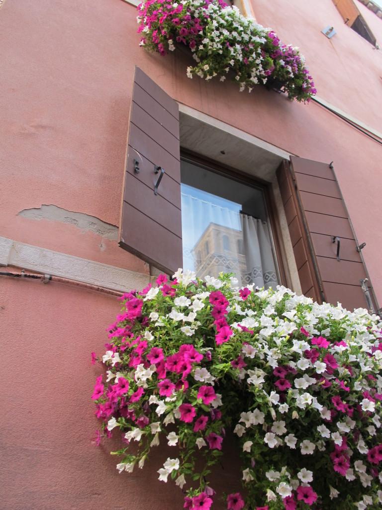 Janelas com flores em Veneza!