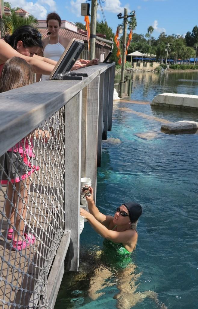 Primeiro uma Host chama a mergulhadora, e pede para ela ela traga as ostras.