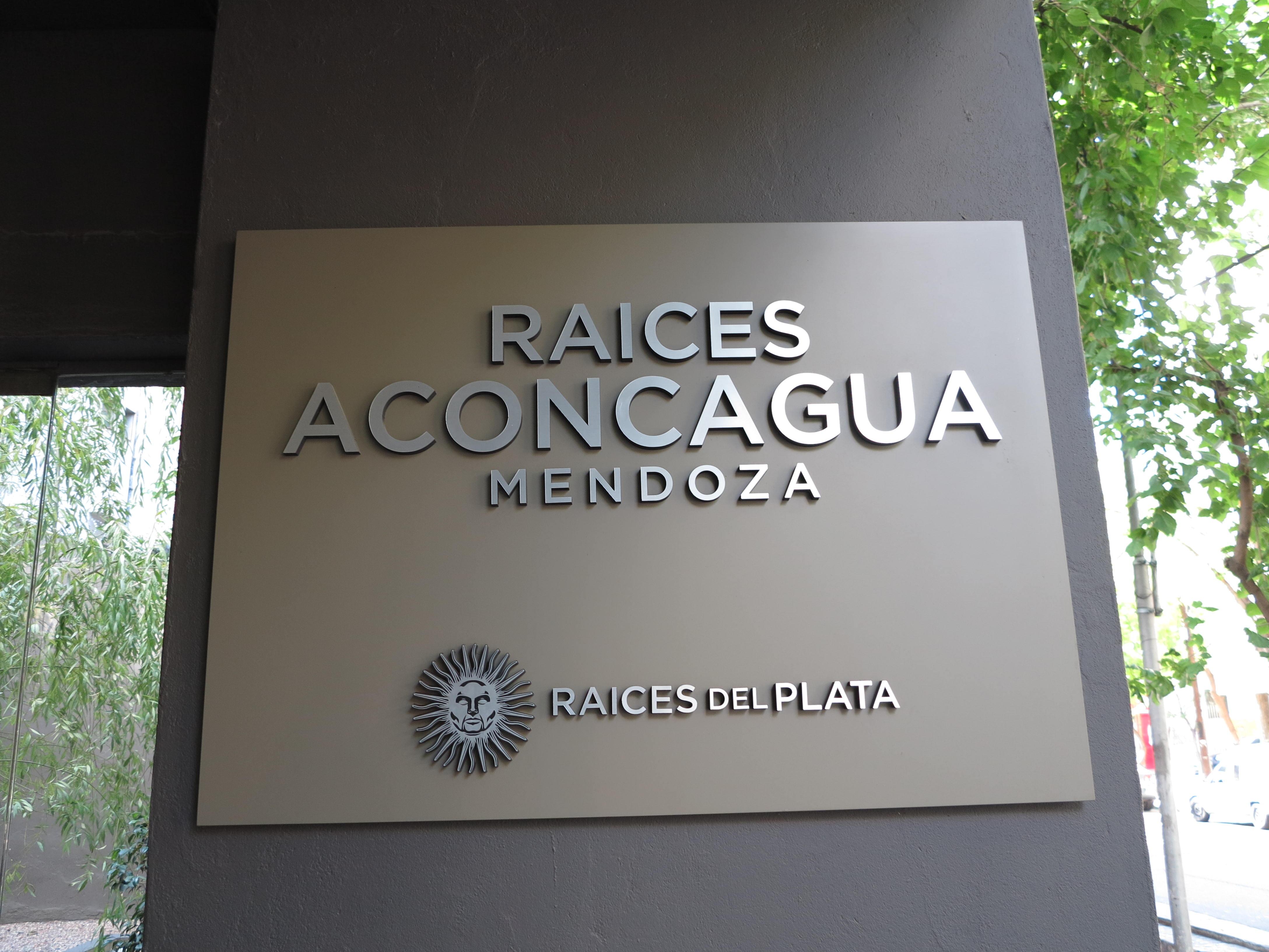 Hotel Raices Aconcagua - Mendoza