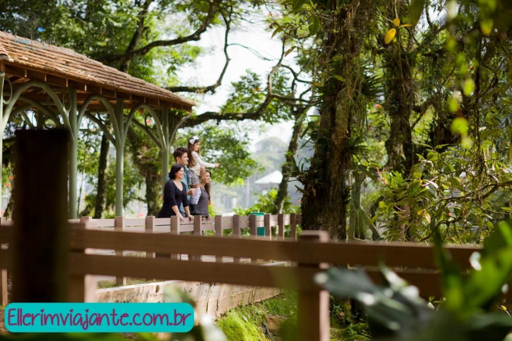 Parque Zoobotânico de Joinville - contemplando a Mata Atlântica no perímetro urbano de Joinville.