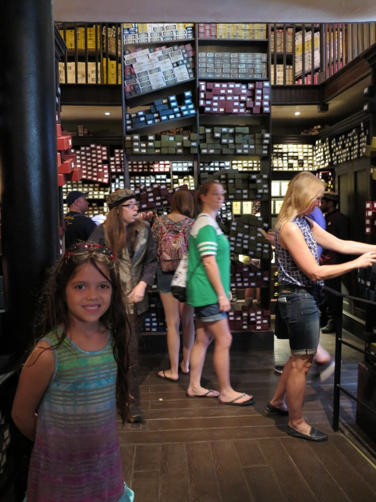 Ollivanders Wand Shop - Wizarding World Harry Potter