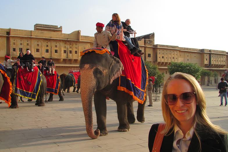 Elefantes em Jaipur