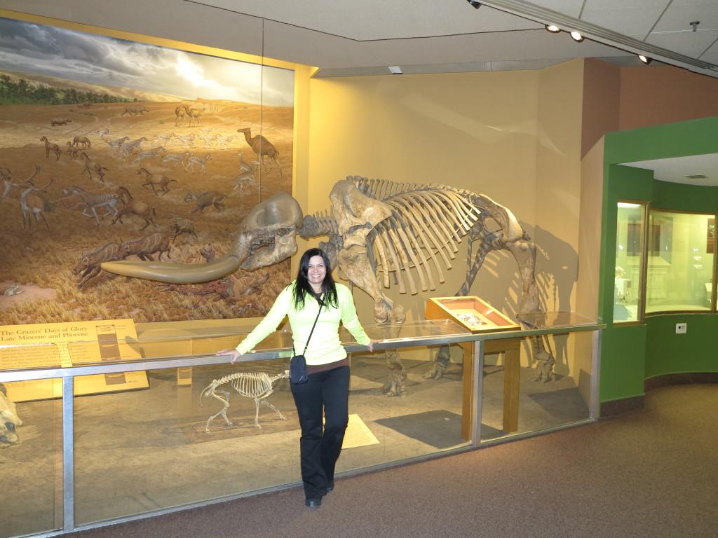 Museu Nacional de História Natural