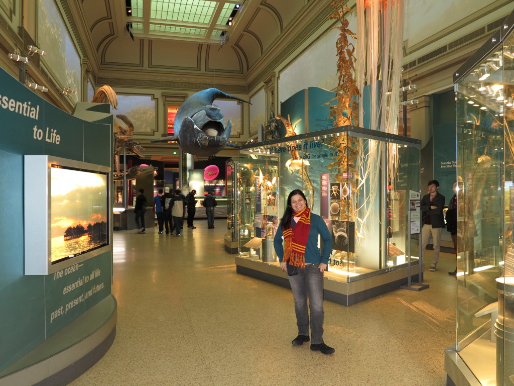 Museu Nacional de História Natural em Washington - Clique aqui para ver o calendário de eventos