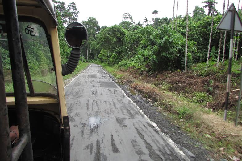 Estrada de asfalto que corta a ilha