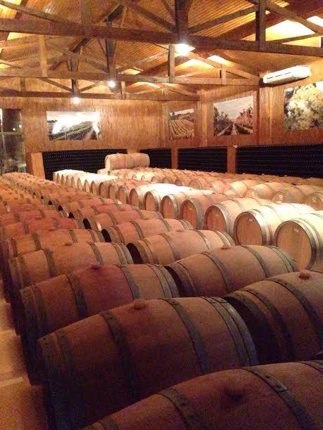 Geralmente os visitantes fazem primeiro a visitação à vinícola, para depois iniciarem a degustação.