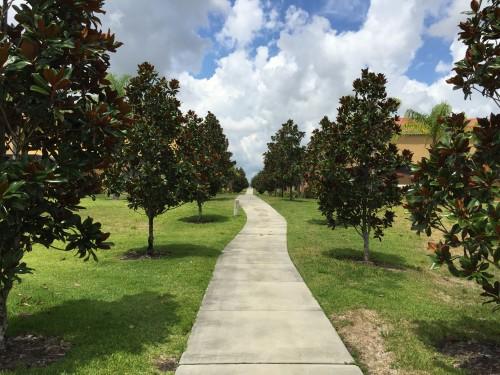 Caminhos para passear pelo condomínio
