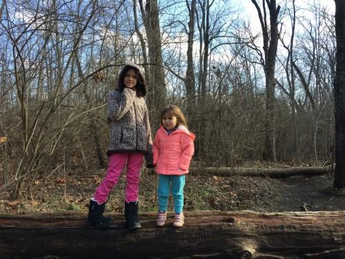 Ellerim e Sofia atravessando o córrego pelo tronco