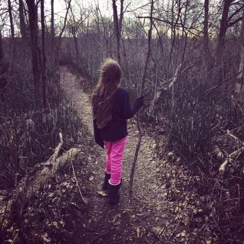 E trilhas pela floresta