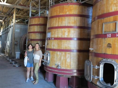 Visitamos o processo de produção do vinho
