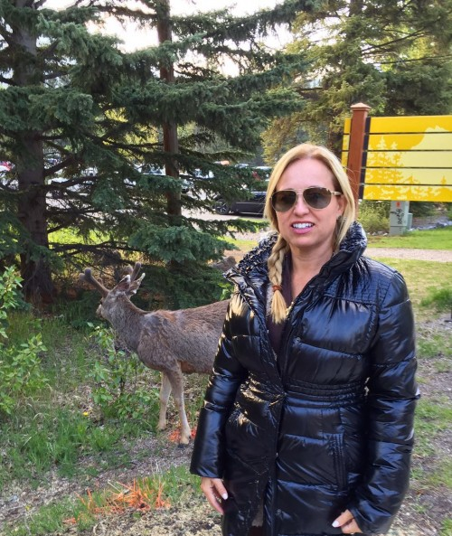 Fazendo mais amizades em Banff