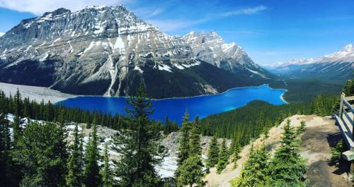 O Maravilhoso Peyto Lake, com suas cores espetaculares, fica entre Banff e Jasper